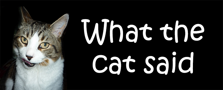 What The Cat Said